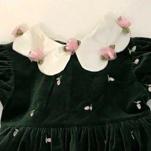 Other - Green Velvet Girls Holiday Dress With Roses 3T